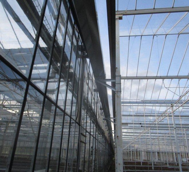 Nobutec-Thomas-Plants-2-04